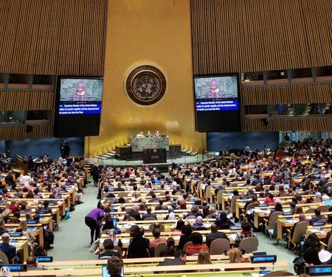 El IPLIDO De La UTHGRA Participa Del CSW63 – Sede Naciones Unidas En Nueva York