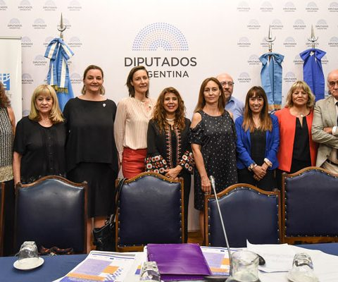 Informe De Femicidio La Casa Del Encuentro Cámara De Diputados – Año 2018